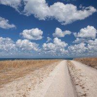 По дороге с облаками... :: Олег Самотохин