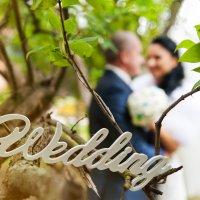 Wedding 03 :: Ирина Булах
