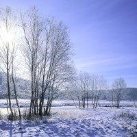 Однажды зимой ... :: Igor Zau