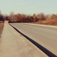 Дорога :: Света Кондрашова
