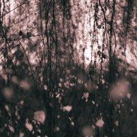 Осенняя печаль :: St. Rezkiy