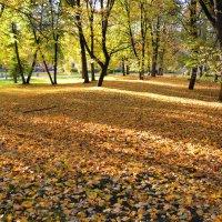 Осень в Великом Новгороде (этюд 1) :: Константин Жирнов