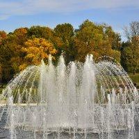 Водный купол :: Андрей Шейко
