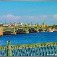 Троицкий мост. :: Александр Лейкум