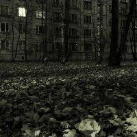 Последняя осень опустевшего дома :: михаил кибирев