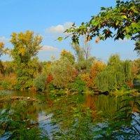 Осень на заливе :: Ростислав