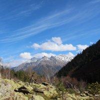 В ущелье реки Бадук :: Светлана Попова