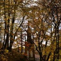 Памятник Карлу :: Наталья Агеева