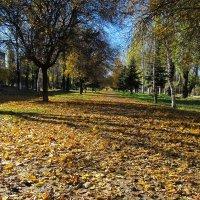 """Осенняя аллея  """"8 сентября"""" :: Мэрин Дюбо"""