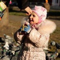 Жизнь прекрасна!!! :: Дмитрий Арсеньев