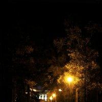Ночь улица фонарь :: Ольга Паршина