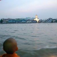 мечта маленького будды :: kirm2 .