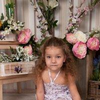 Маленькая принцесса :: Наталия Чаус