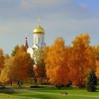 Златые головы среди злата листвы :: Владислав Писаревский