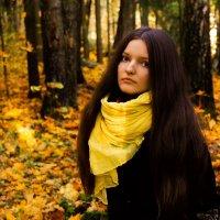 В осеннем лесу :: Dmitry Azarenkov
