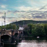 Пражский мост :: Алена Третяк
