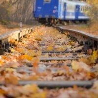 Осенний путь :: Евгений Хаустов