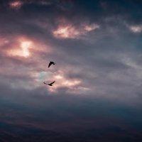 небо ... :: Евгений Мадзинов