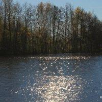 Осенний пейзаж :: Лариса