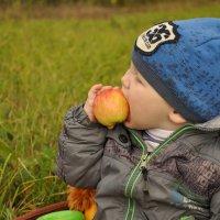 вкусное яблочко :: Анастасия Пахомова