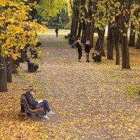 Листопад, листопад... :: Nonna