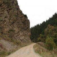 горное ущелье :: Nadezhda Vorobyova