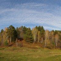 щедрые краски осени :: Vladimir Beloborodov