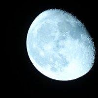 Луна :: Ирина Пенькова
