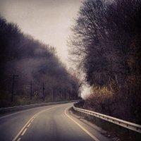 Лесная дорога :: PersONA Incognito