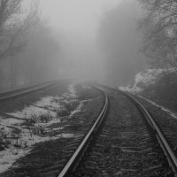 дорога сквозь туман :: vladimir Zibrov