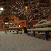 снег :: Сергей Запорожцев