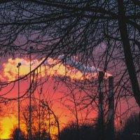 пожар :: Nina Zhafirova