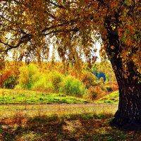 В полуденной тиши шелестит листопад... :: Виктор Петропавловский
