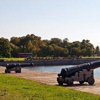 Пушки на берегу Итальянского пруда :: Надежда Лаптева