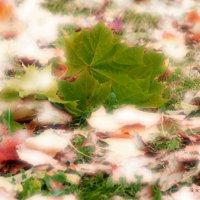 осенняя листва :: Алена Сухарева