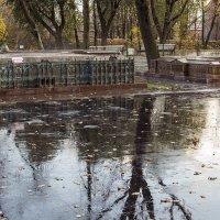 После дождя :: Valerii Ivanov