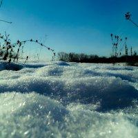 Снег :: Андрей Гришанов