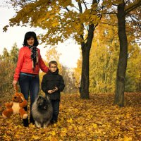 Осень :: Дмитрий Мантуш