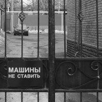 зкапрет :: Саша Милашкин