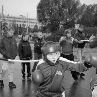 Удар! Еще удар! :: Анатолий Тимофеев