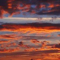 Палитра красок заката. :: Антонина Гугаева