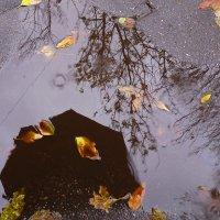 дождь :: ОЛЬГА СИЗОВА