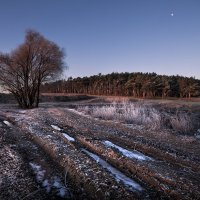 Первые заморозки :: Валерий Шейкин