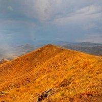 закатный свет украсил все холмы :: viton