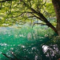 Голубое озеро - Кабардино-Балкария :: Maxxx©