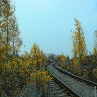 Осенние краски :: Виктор Пархоменко