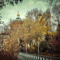 Гомельский парк. Вид на собор Петра и Павла с пешеходного моста :: Сергей Пилтник