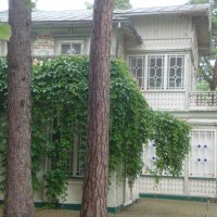 Лето в Юрмале :: Mariya laimite