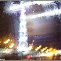 Жизнь за стеклом :: vadim