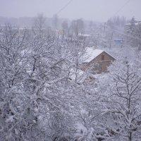 Зимняя сказка :: Елена Савченко